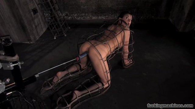 Порно видео оргазм клетка